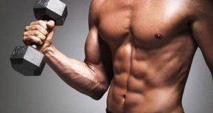 بالصور كم عدد عضلات جسم الانسان , تعرف على عضلات جسمك بالفيديو