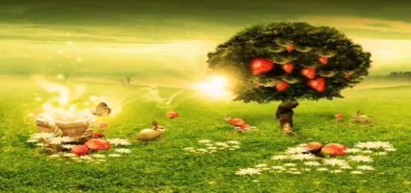 صور قصة ادم وحواء , حكاية ابو البشر ادم وحواء