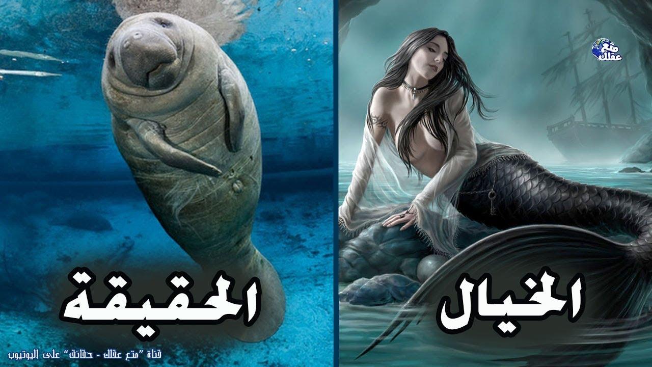 بالصور صور عروسه البحر , حوريات البحار مابين الحقيقه و الاساطير 4286 5