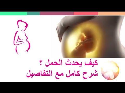 صور كيفية حدوث الحمل , كيف ومتى يحدث الحمل؟