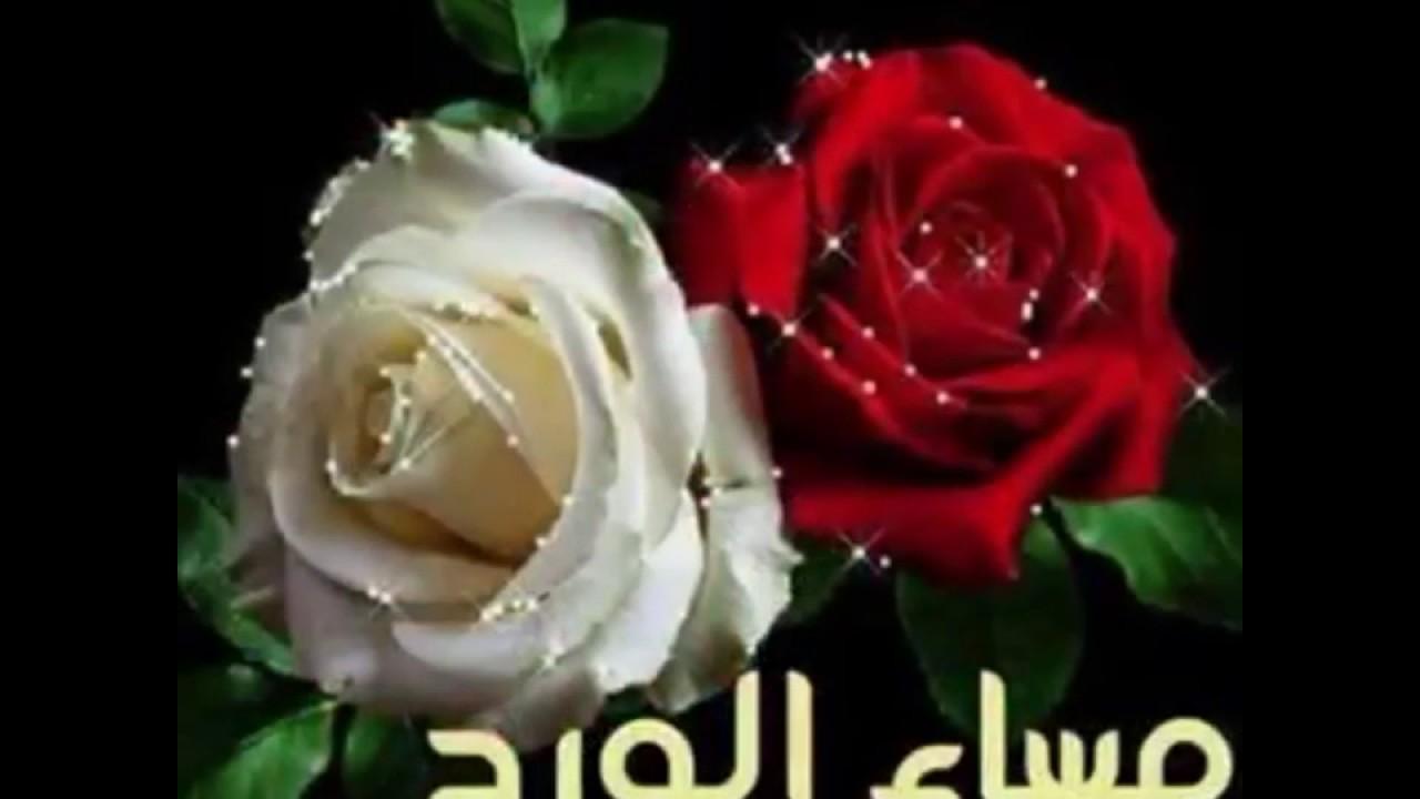 بالصور بطاقات مساء الورد , اهداء اجمل بطاقات مساء الورد 4717 6