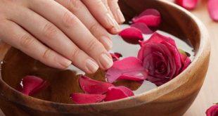 ماء الورد للشعر , اهم فوائد ماء الورد للشعر