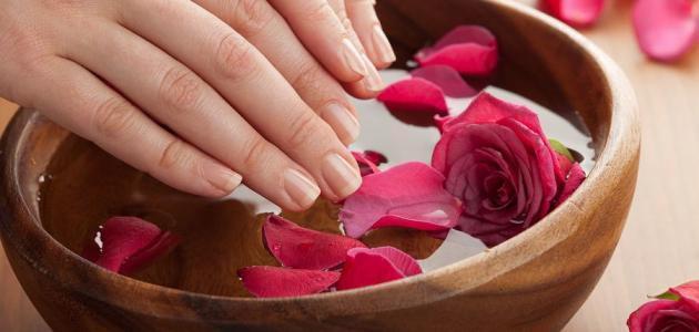 صورة ماء الورد للشعر , اهم فوائد ماء الورد للشعر