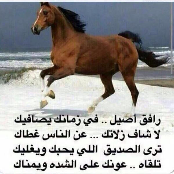 بالصور شعر مدح شخص غالي , اجمل اشعار المدح للاشخاص الغالية 6445