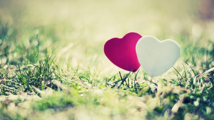 بالصور خلفيات عن الحب , اروع خلفية تراها عن الحب 6504 1