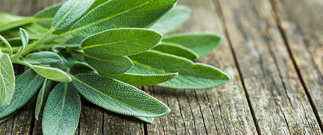 صور فوائد المرمية , تعرف على اهم الفوائد لعشب المرمية
