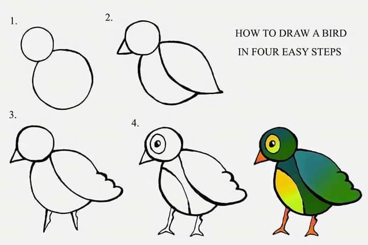بالصور رسم سهل جدا , اجمل رسومات سهلة ومميزة 6528 4