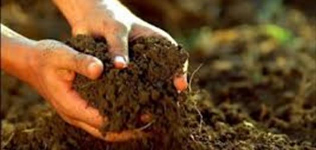 صورة مكونات التربة , تعرف معنا على مكونات التربه 1282