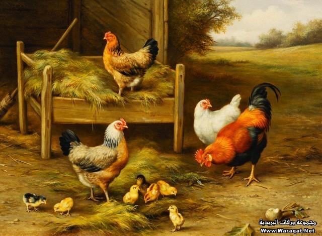 بالصور رسومات جميله , اجمل الرسومات 1286 9