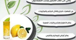 صوره فوائد الليمون , تعرف على فوائد الليمون واستخداماته