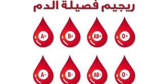 صوره رجيم فصيلة الدم , تعرف على ريجيم فصيلة الدم