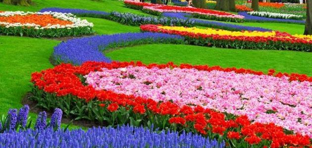 صور صور فصل الربيع , اجمل الصور عن فصل الربيع