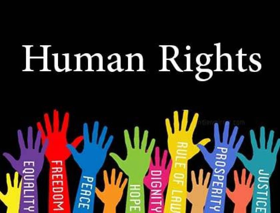 صورة ما هي حقوق الانسان , اهم ما يجب ان تعرفه عن حقوق الانسان