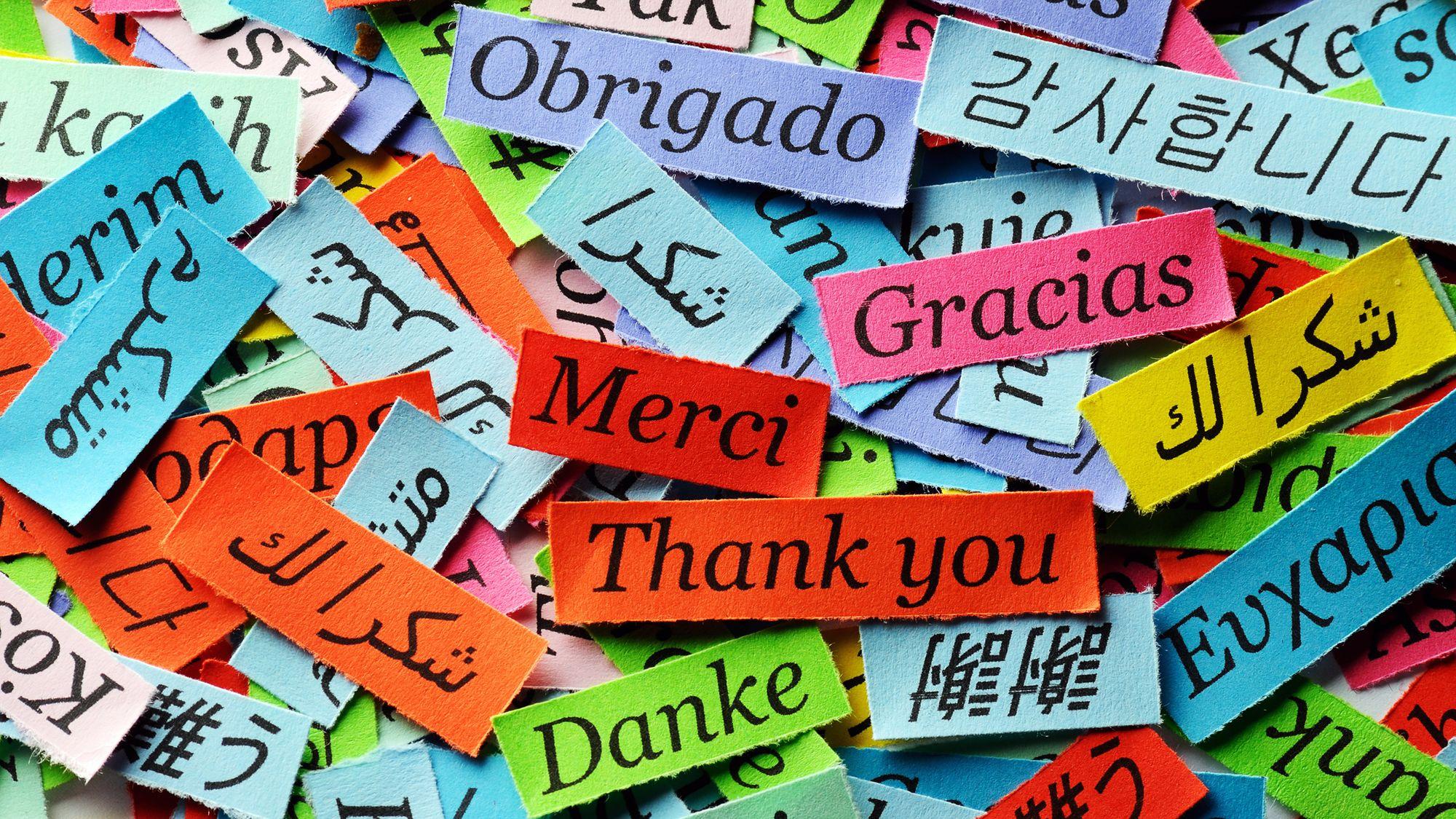 معنى كلمه شكرا باللغه الانجليزيه Jaziyat Blog