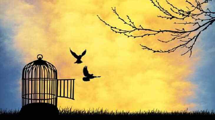 بالصور موضوع تعبير عن الحرية , افضل موضوع تعبير يتحدث عن الحرية 6575 1