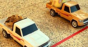صوره سيارات ريموت , صور سيارات ريموت