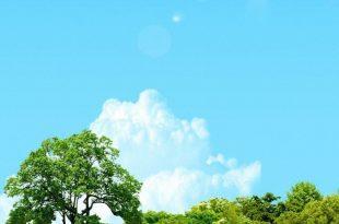 صورة خلفيات شاشة جوال , اجمل خلفيات الجوال