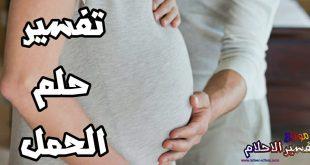 بالصور الحمل في المنام للمتزوجة , تفسير الحمل للمتزوجه 1666 2 310x165