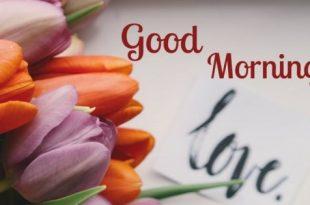 صور صباح الورد حبيبتي , اجمل صباح للاحباب