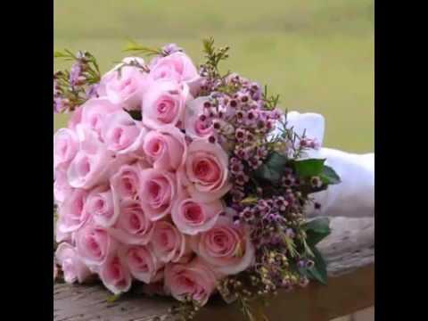 بالصور اجمل صور الورد , صور ورد روعة 2517 8