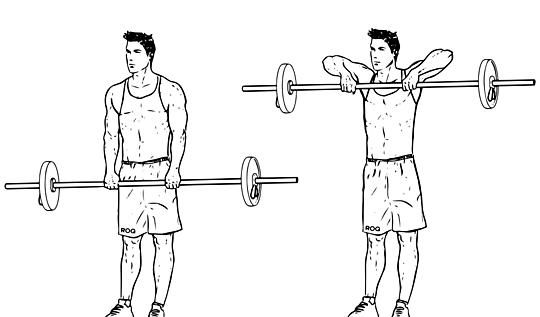 بالصور تمرين العضلات , كيفيه الحفاظ على الجسم 2628
