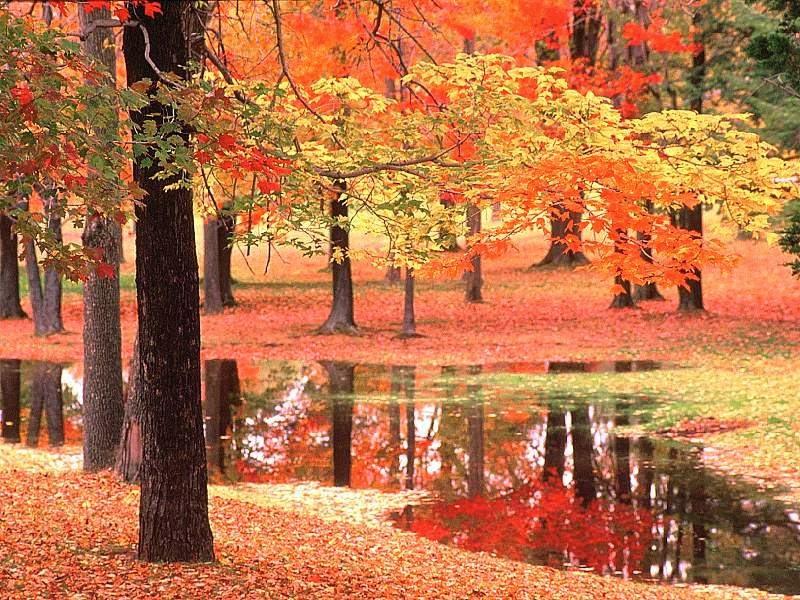 بالصور اروع الصور للطبيعة , اجمل المناظر الطبعية 289 1