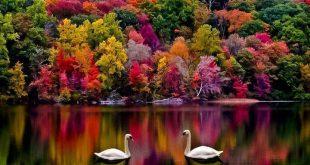 صوره اروع الصور للطبيعة , اجمل المناظر الطبعية