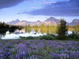 بالصور اروع الصور للطبيعة , اجمل المناظر الطبعية 289 4