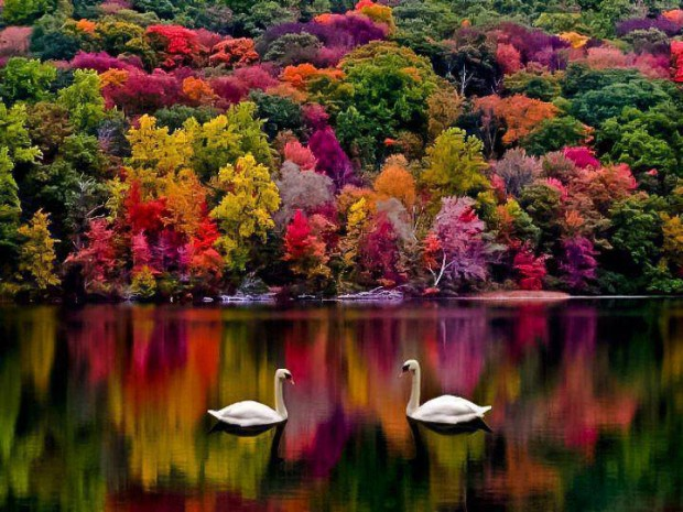 بالصور اروع الصور للطبيعة , اجمل المناظر الطبعية 289
