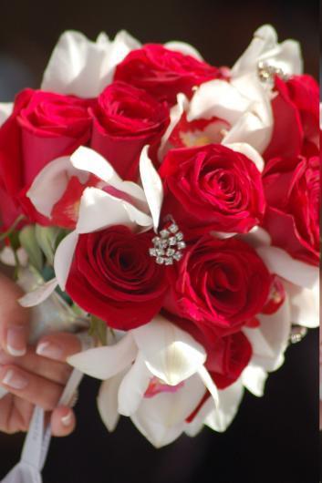بالصور صور الورد , اجمل ورد ممكن تشوفه 3094 1