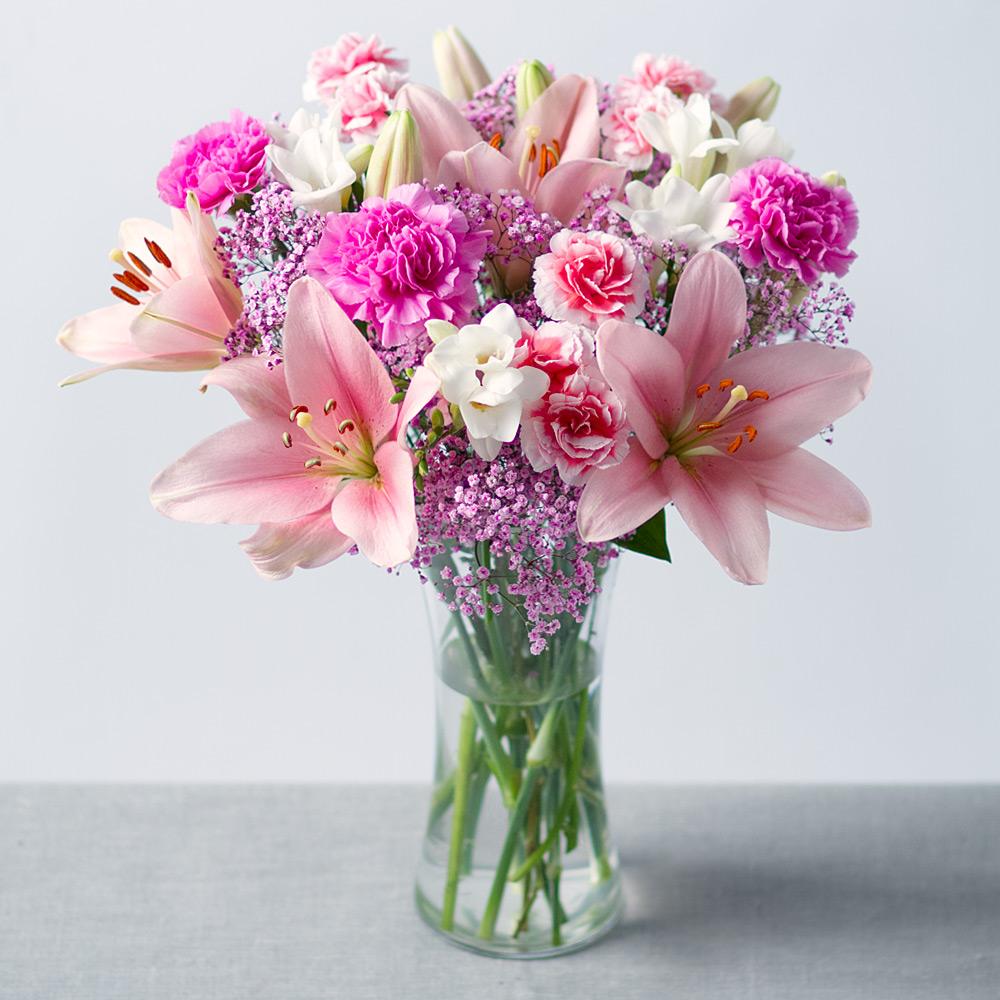 بالصور صور الورد , اجمل ورد ممكن تشوفه 3094 7