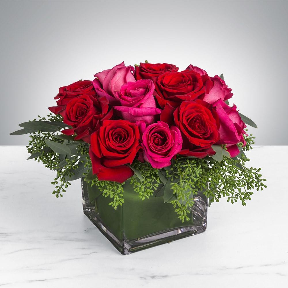 بالصور صور الورد , اجمل ورد ممكن تشوفه 3094 9