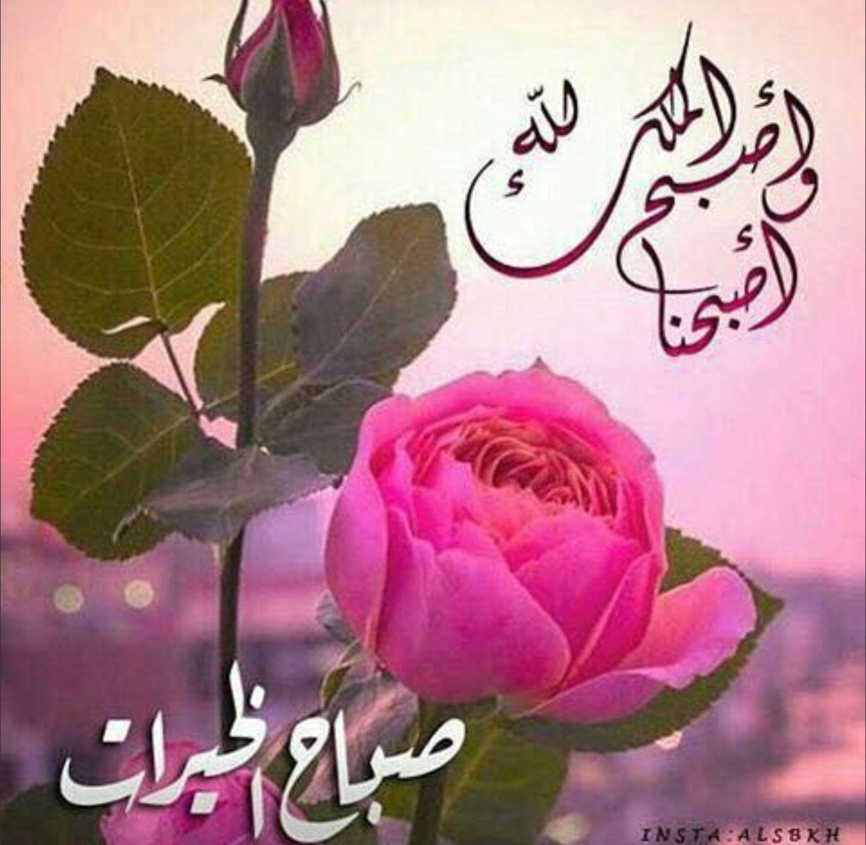 بالصور صور صباحيه للحبيب , اروع الرسائل الصباحية 3437 1
