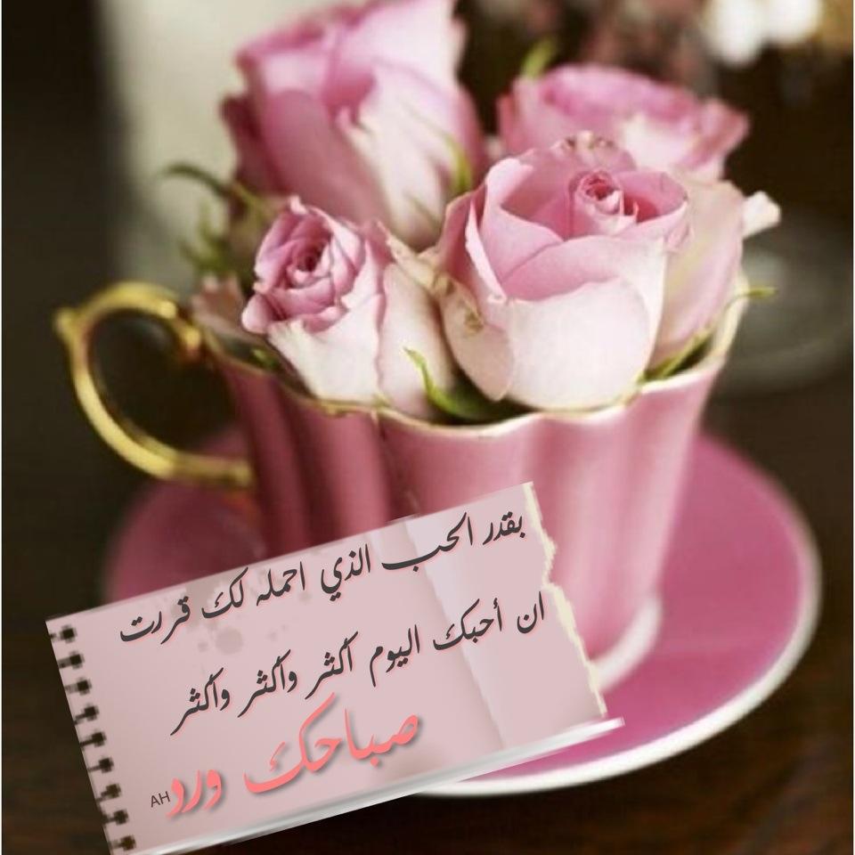 بالصور صور صباحيه للحبيب , اروع الرسائل الصباحية 3437 8