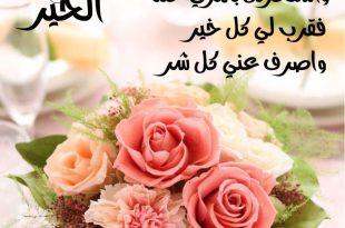 بالصور صباح الورد والفل , اجمل رسائل الصباح الجميلة 3537 12 310x205