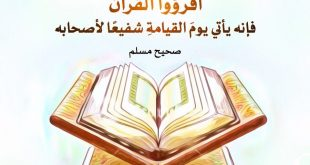 بالصور هل يجوز قراءة القران بدون وضوء , حكم قراءة القران بدون وضوء 3619 3 310x165