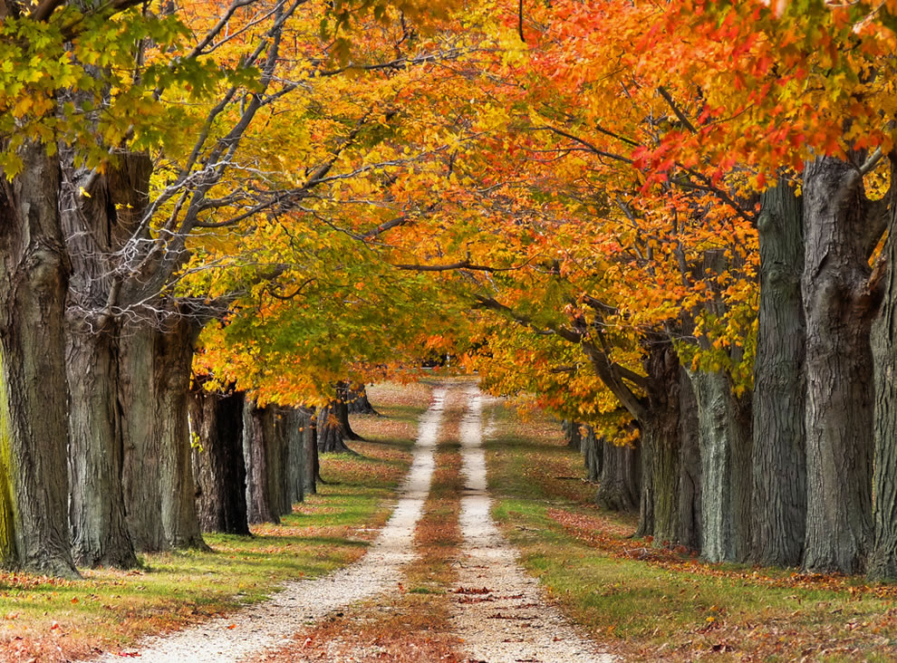 بالصور صور مناظر طبيعيه , اجمل واروع المناظر الطبيعيه 5376 10