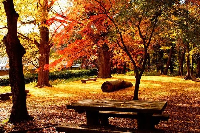 بالصور صور مناظر طبيعيه , اجمل واروع المناظر الطبيعيه 5376 6