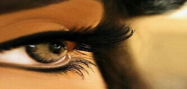 بالصور صور اجمل عيون , سحر العيون وجمالها 5381 2