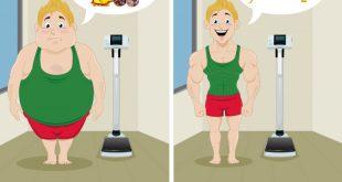 بالصور نظام غذائي لانقاص الوزن , كيف تنقص وزنك بسهوله 5382 3 310x165