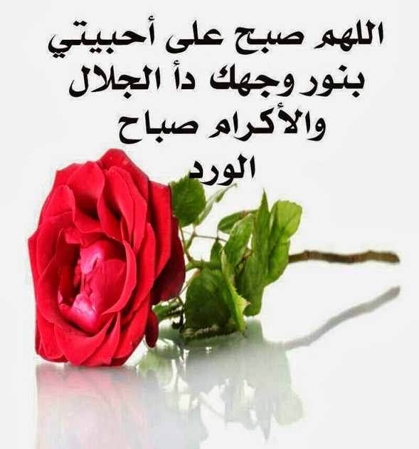 بالصور صور صباح خير , احلى صور صباح الخير 5386 4