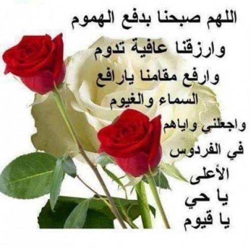 بالصور صور صباح خير , احلى صور صباح الخير 5386 5