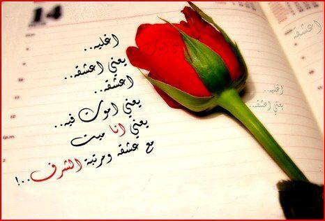 بالصور ورود مكتوب عليها عبارات جميله , صور لاجمل الورود بارق عبارات 5387 5