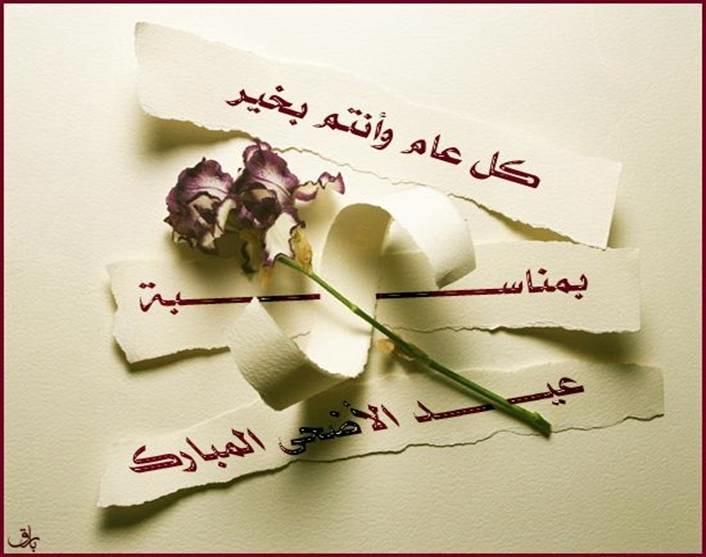 بالصور ورود مكتوب عليها عبارات جميله , صور لاجمل الورود بارق عبارات 5387 8