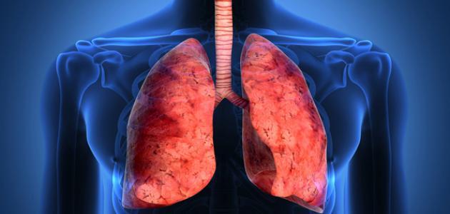 بالصور علاج تليف الكبد , تليف الكبد انتشر بسبب الجهل 5513 1
