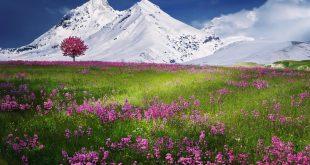 صورة مناظر طبيعية خلابة , جمال الطبيعة الساحرة