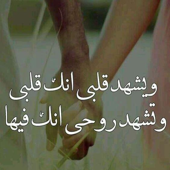 صورة كلام جميل عن الحب , احلي عبارات مميزة عن الحب