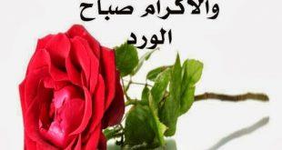 صورة صباح الخير يا عرب , عبارات صباحية رائعة للاقارب 2477 12 310x165