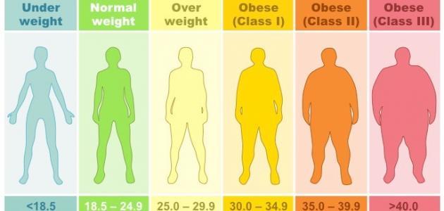 صورة حساب الوزن المثالي , كيفيه معرفه الوزن المثالى لجسمك 478