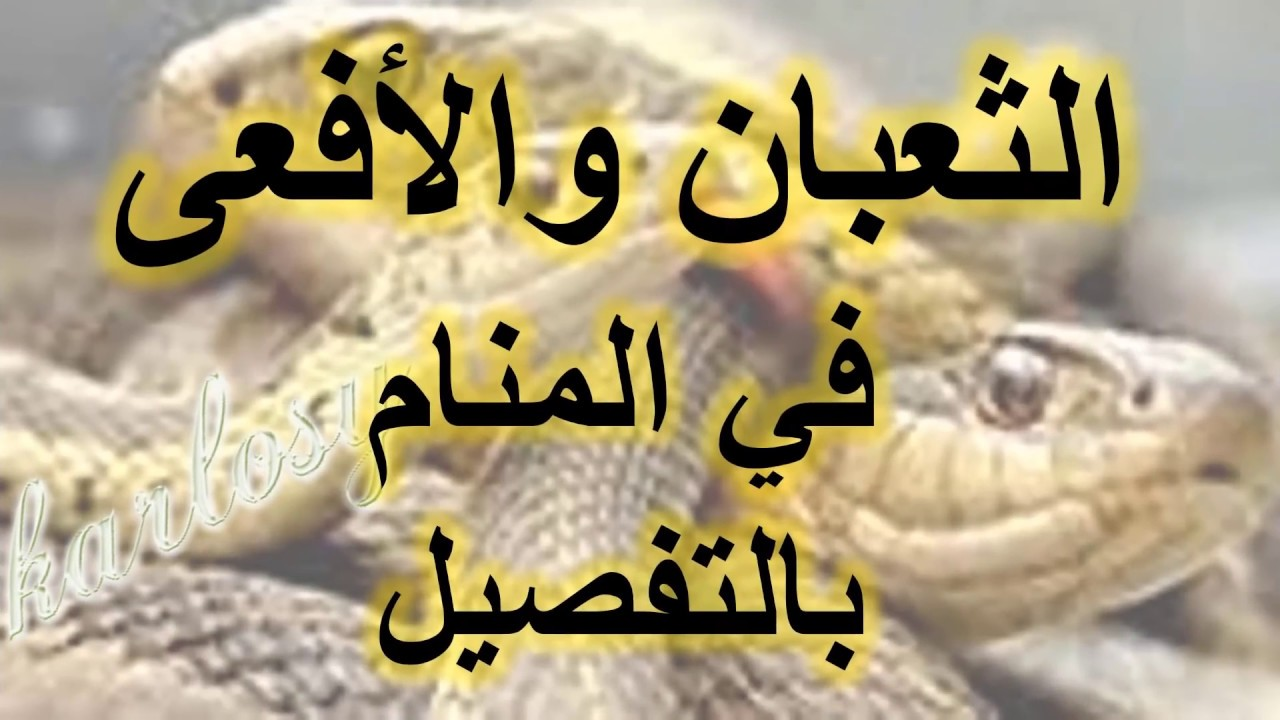 صوره تفسير الثعبان في المنام , تعبير رؤيا الثعابين في الحلم